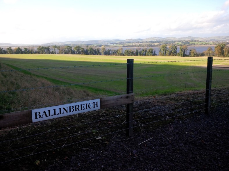 22.4 Ballinbreich farmland, rotated, first